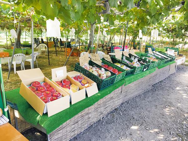 季節の果物が揃う直売所