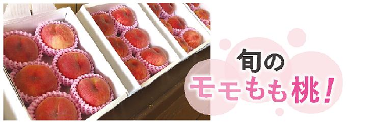 ▲旬のモモもも桃!